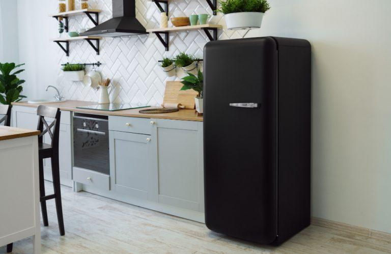 Как да изберем хладилник